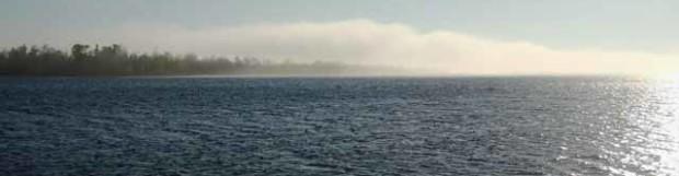 Cool Fog