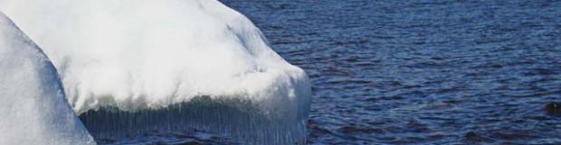 Snow & Ice Sculptures