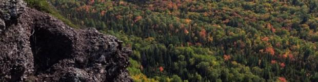 Fall Color Progression Update 9/29