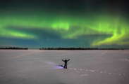 Aurora Borealis ~Steve Brimm